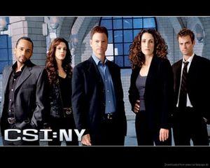 CSI-NY.jpg