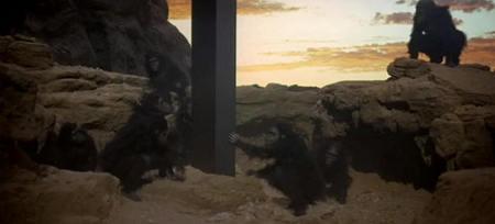 ape touches monolith.jpg